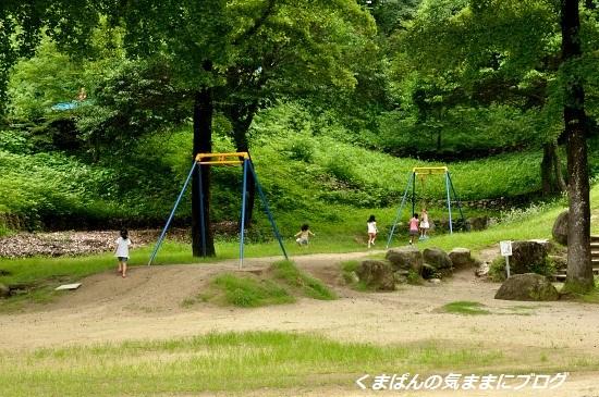 Nikon_20130630_142534.jpg