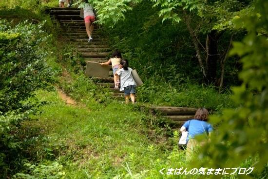 Nikon_20130630_142930.jpg