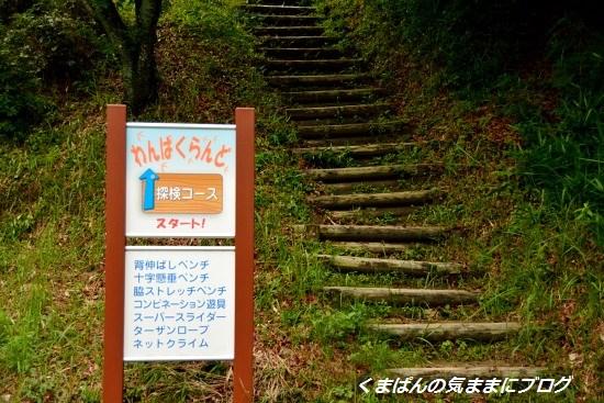 Nikon_20130630_144734.jpg