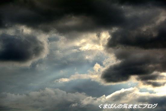 Nikon_20130630_175319.jpg