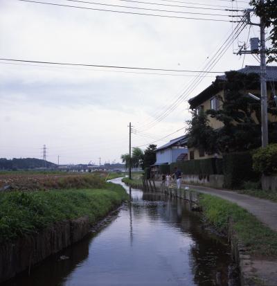 柴又川向_convert_20120428214004