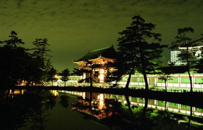 大仏殿夜景