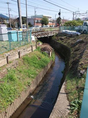 千川上水1