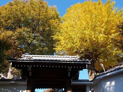 神石寺いちょう