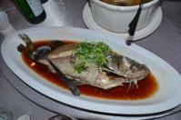 オイスター蒸し魚0923