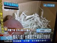 台南愛文マンゴー日本向け輸出で品切れの恐れ