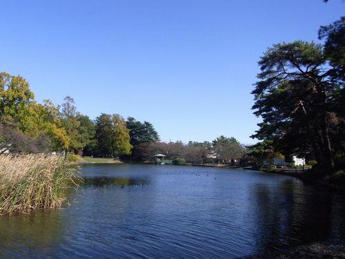 大宮公園3