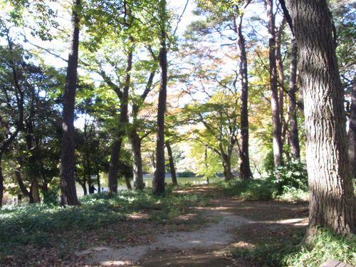 大宮公園6