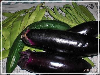 20120621野菜2