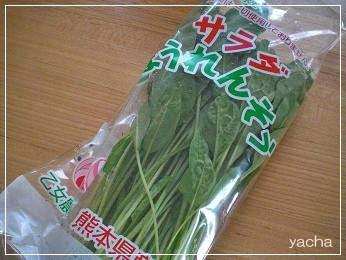 20120730サラダほうれん草