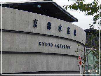 20120813京都水族館