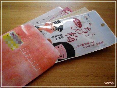 20121104ちょび梅封筒