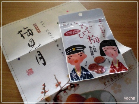 20121104ちょび梅当選