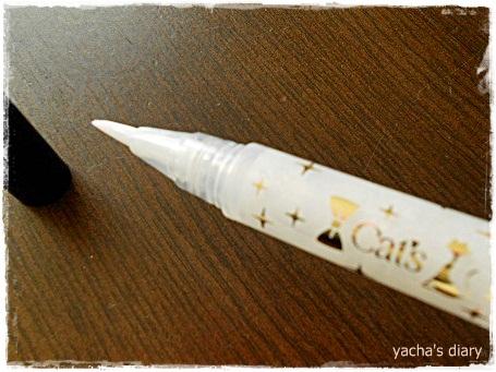20121231白ペン先