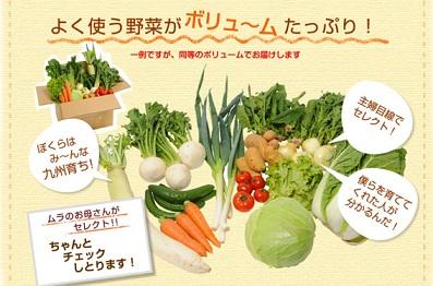 20130107ムラコレ野菜
