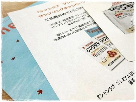20130110武田当選