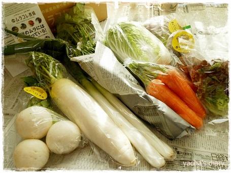 20130116ムラコレ野菜