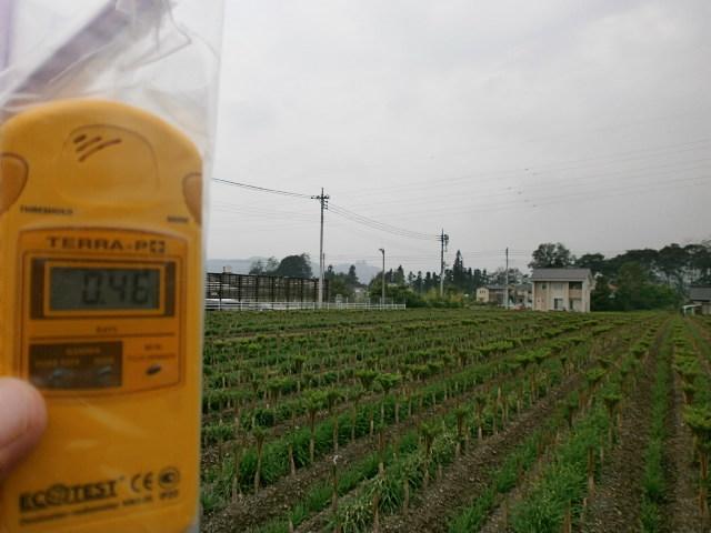 横塚蒟蒻畑120704