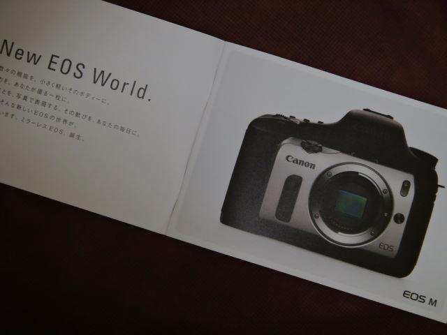 DSC09845 (1)0002