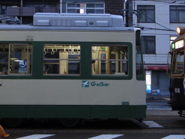 DSC00460 (1)0001