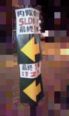 223_copy.jpg