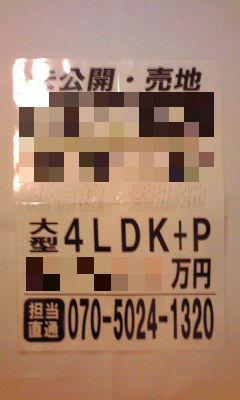 231_copy.jpg