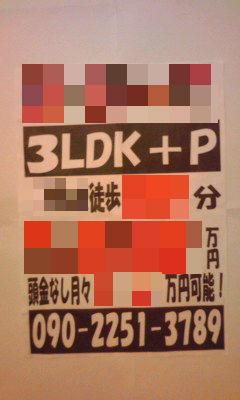 242_copy.jpg