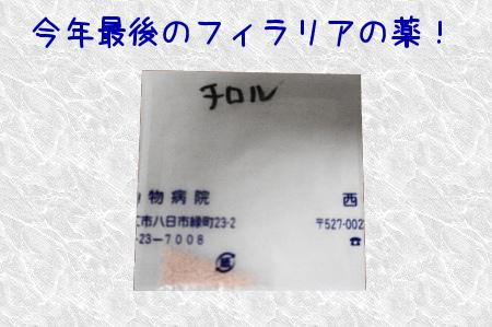 DSC00477 (1)