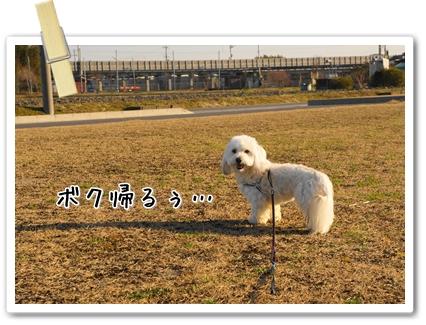 DSC09758 (1)