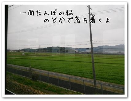 DSC_0119 (1)