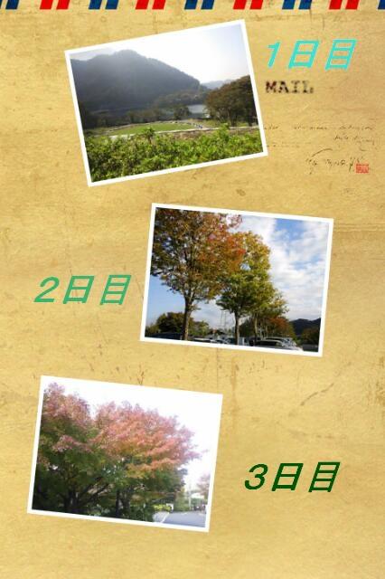 20121107_182021.jpg