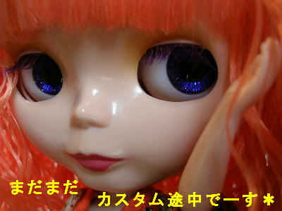 DSCN0978a.jpg