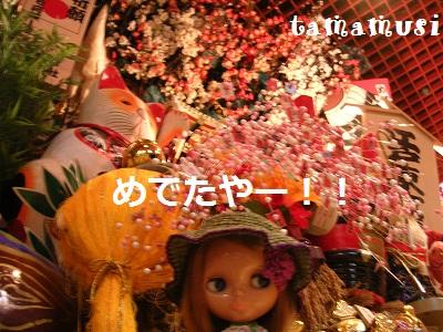 DSCN1473a.jpg