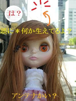 DSCN1498a.jpg