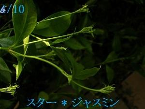 20120510g2