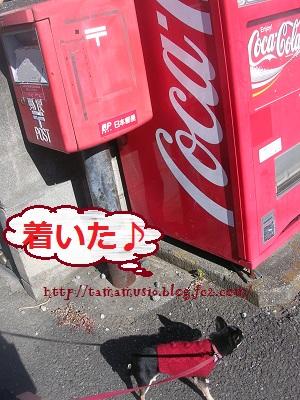 DSCN7449a_20121219143720.jpg