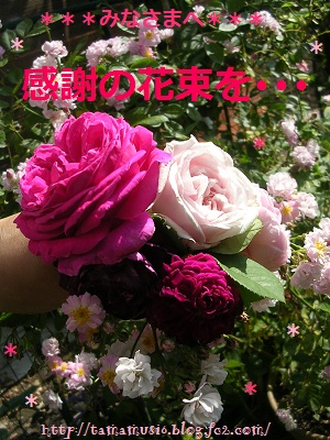 DSCN7663a.jpg