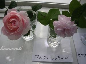 20120526og18