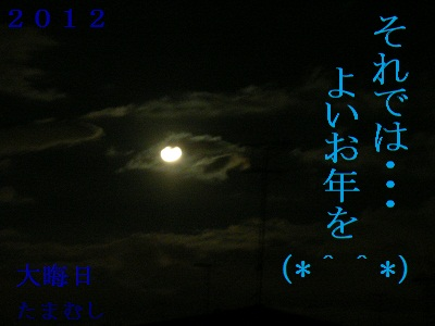 DSCN8238a.jpg