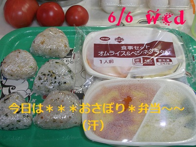 DSCN9384a.jpg