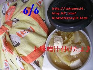 DSCN9507a.jpg