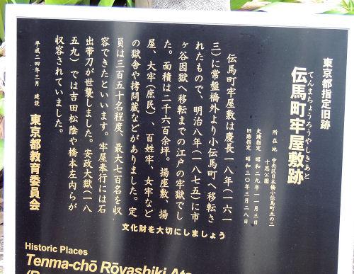 130108shichi01.jpg