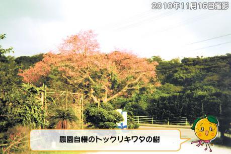 201211_001.jpg
