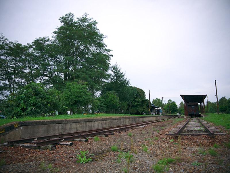 P1070884.jpg