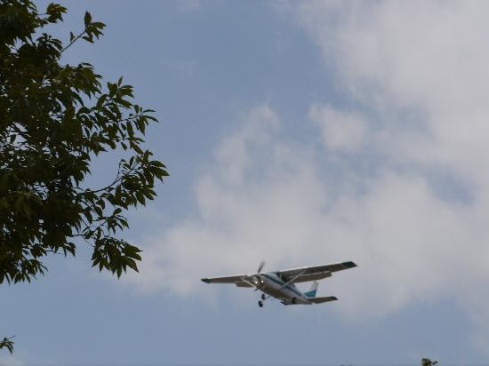 P1120066.jpg