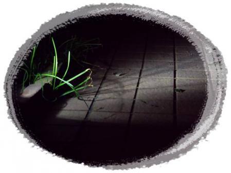 008_20121124174710.jpg