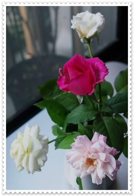 rose727 007