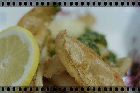 fish 022