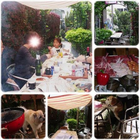 cats1_20120429224238.jpg