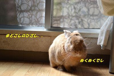 003_20121011141857.jpg